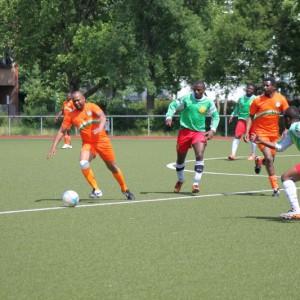 Spiel Niger-Kamerun